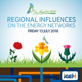 Regional Influences on the Energy Networks